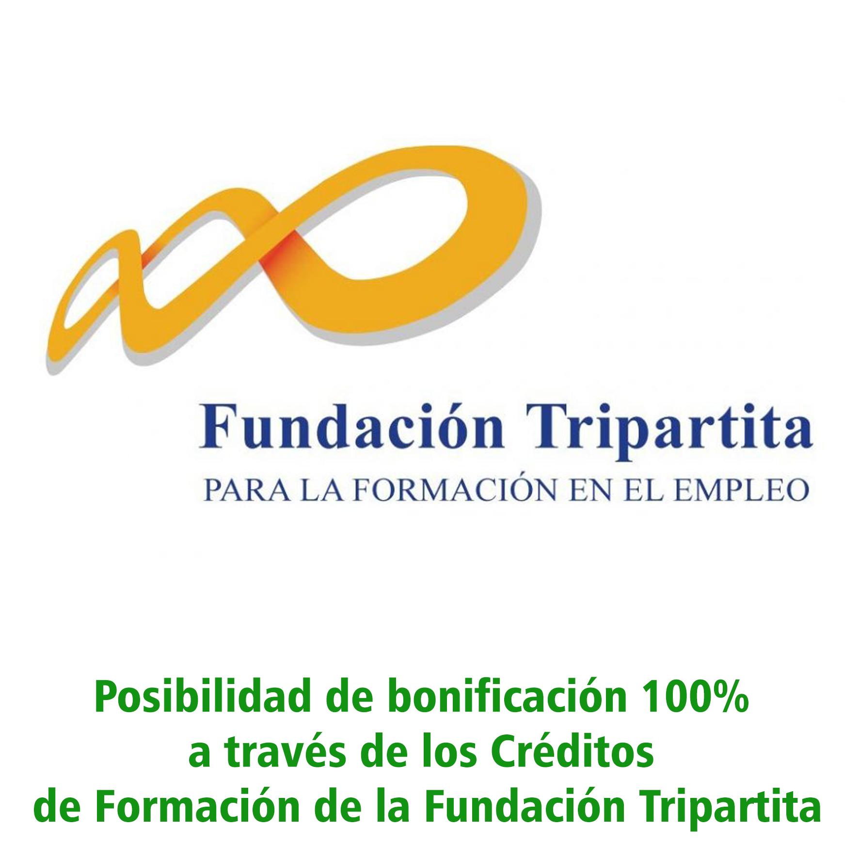 Cursos avalados por Fundación Tripartita
